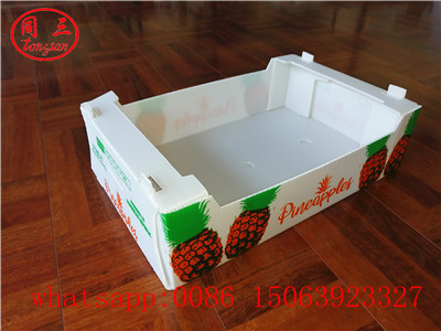 pp hollow sheet box