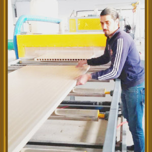 PVC/UPVC WPC door panel making machine Turnkey project for WPC doors making machines