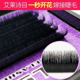 eyelashes extension Wholesale Classic Camellia Grafting eyelash extensions