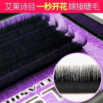 eyelashes extension Wholesale Classic Camellia Grafting eyelash extensions
