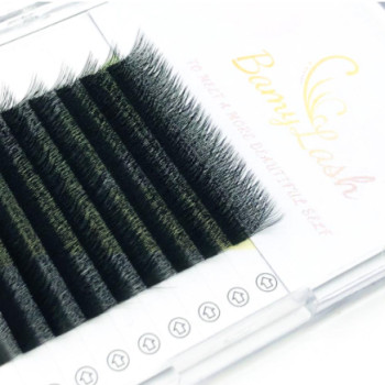 Lash Extensions Fast Fanning Handmade Individual Double Layer Fiber Flower Eyelash Extension