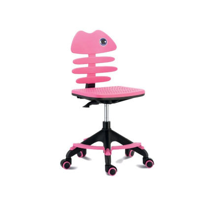 Ergonomic study chair, Metal frame , plastic seat