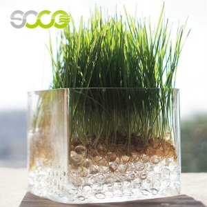 Non Toxic Water Retention Agent for Agricultural and Forestry Drought Resistance