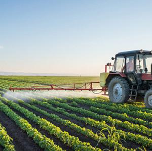 SOCO Nuevo producto Agrogel de resistencia a la sequía agrícola SAP para plántulas de cultivo