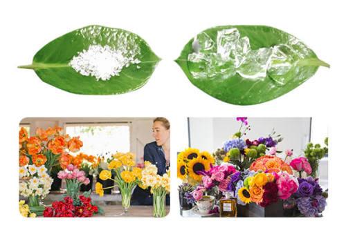 Супер впитывающий полимер для транспортировки срезанных цветов