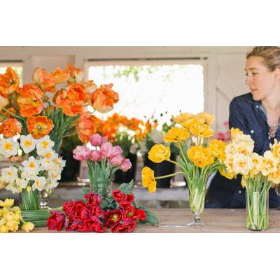 Polímero súper absorbente para transportar flores cortadas