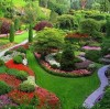 Application of water-retaining agent in landscaping