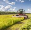 Aplicación de agente retenedor de agua del suelo en cultivos.