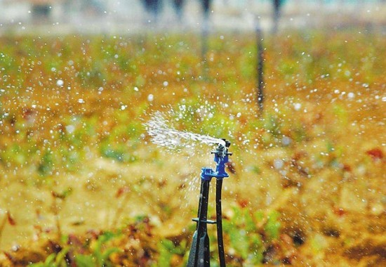 Application of water retaining agent in water saving irrigation
