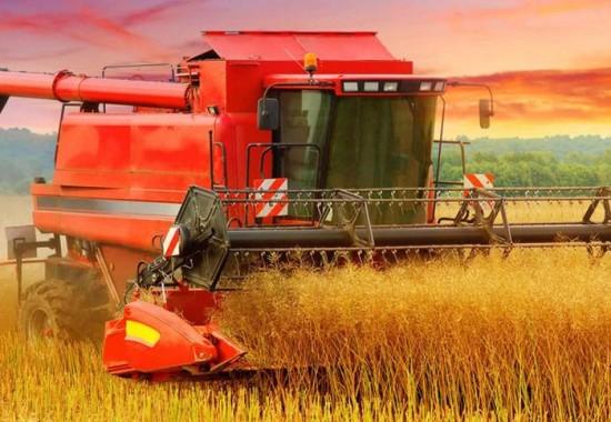 ¿Cuál es la aplicación y el efecto del agente de retención de agua en la producción agrícola?