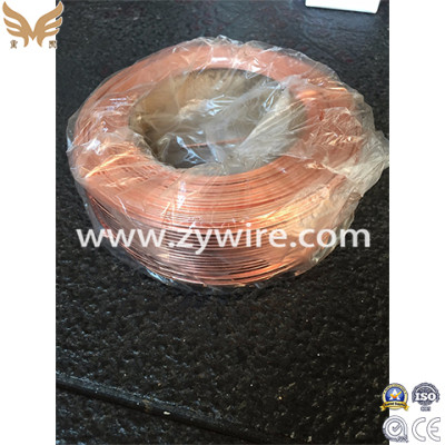 Chinese Brass Coated Flat Steel Wire-Zhongyou