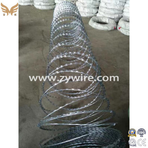 Galvanized PVC Coated Concertina Razor Wire/Barbed