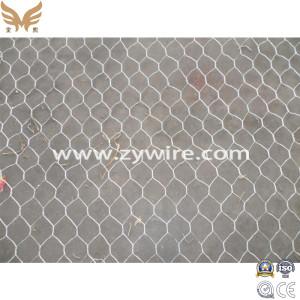 Hexagonal Wire Mesh/Netting for Chicken Wire Galvanized