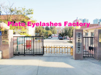 Qingdao Plato Eyelash Factory