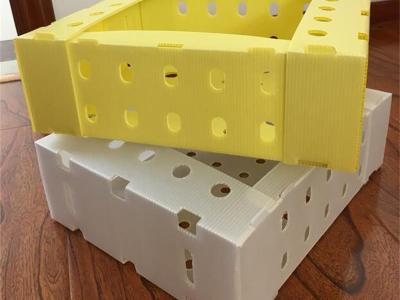PP Plastic stackable packaging boxes corrugated coroplast boxes for fruit and vegetable