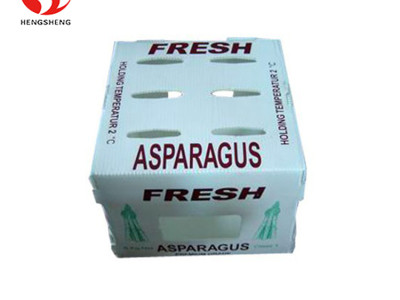 Good Quality PP Plastic Corrugated Packing Vegetables Asparagus Box