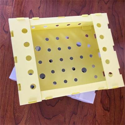 Waterproof foldable fruit and vegetable polypropylene corflute danpla PP corrugated plastic box