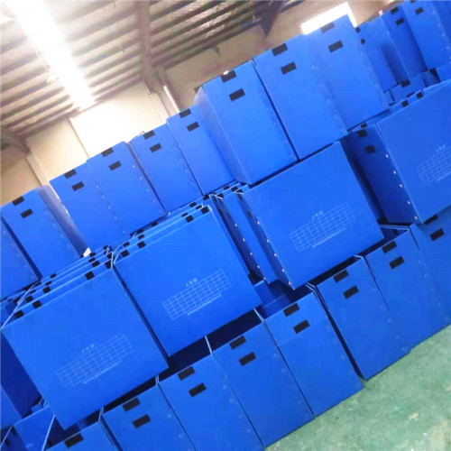 PP sheet with H hole China pp plastic corrugated sheet manufacturer Qingdao Hengsheng Plastic