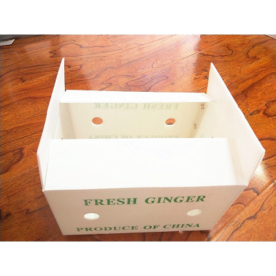Factory directly sale fresh fruit delivery foldable packing box