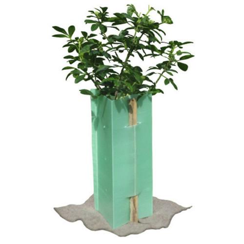 Corflute tree shelters vine guards