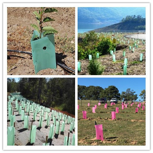 Plant Protection, Revegetation Tree Guard 200mm sides, 450mm high, green, corflute