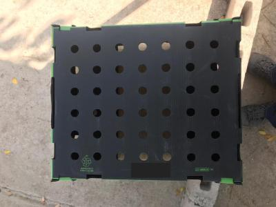 Stackable Sweet bean packing box 10lbs okra packing box