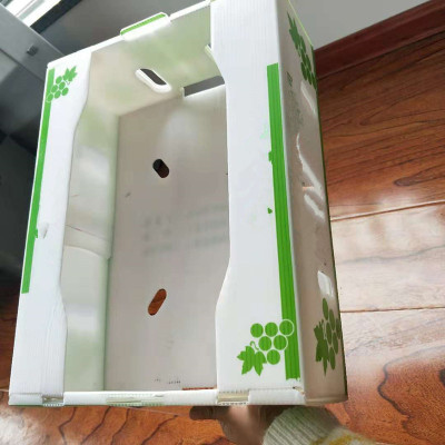 Printed colorful ODM&OEM plastic coroplast box for fruit and vegetable packing