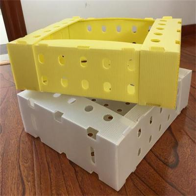 2020 best sale anti-knock foldable hollow board plastic packing box