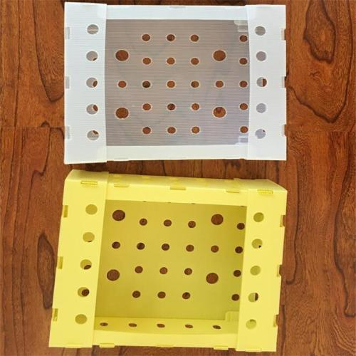 PP foldable fruit packing box vegetable packing cases