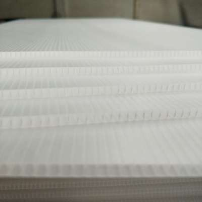 Custom shape & size PP corrugated sheet