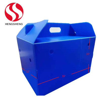 PP plastic foldable Fruit gift boxes for fresh fruit delivery