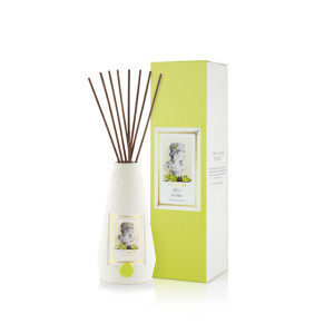 Natural essential oil fragrance diffuser in nice packaging