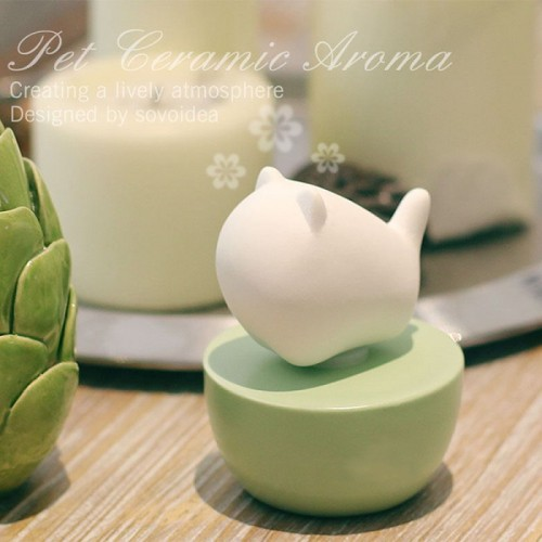 Beautifully packaged pure lovely ceramic diffuser with fragrance natural essential oil