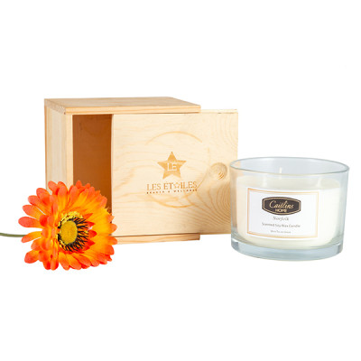 Three wicks scented soy candles with luxury natural wood box