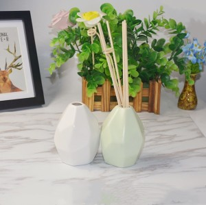 Home Decorative Ceramic Aroma Reed Diffuser with Rattan Sticks