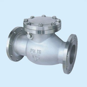 DN150 PN40 Swing Check Valve