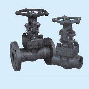 American Forged Steel A105 Flanged High Pressure Gate Valve 1 Inch
