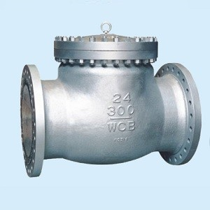 What is the function and working principle of the check valve?
