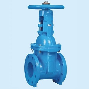 Soft Seat Cast Iron Rising Stem Sewerage Gate Valve with Flange