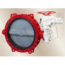 Structural characteristics of butterfly valves