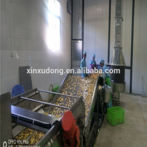 factory supplier China automatic banana plantain chips stainless steel plantain chips machine