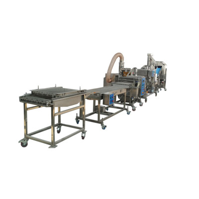 Automatic potato chips and french fries processing line