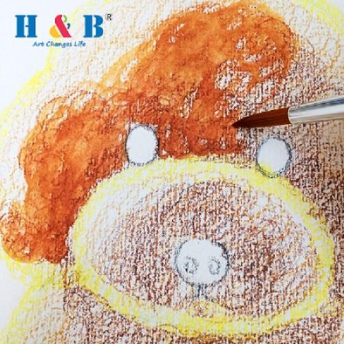 H & B 31 pcs watercolor paint kit