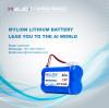 Lithium battery Basic knowledge III