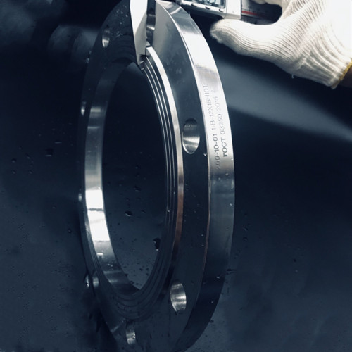 PN 10 GOST carbon steel forged flanges for plumbing system