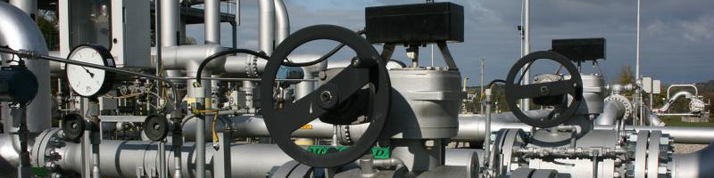 What flanges are used in petrochemical industry?