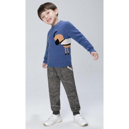 100% cashmere boy crewneck sweater EK19W01