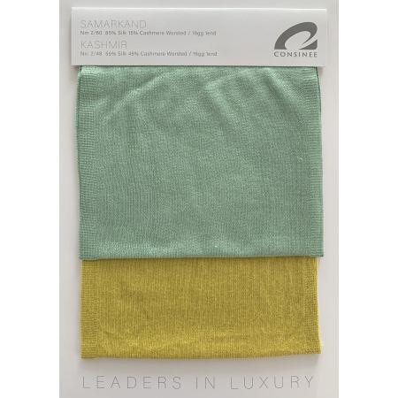 Ewsca Frühling neue ausgefallene Farbkarten mit Seidenkaschmir-Mix
