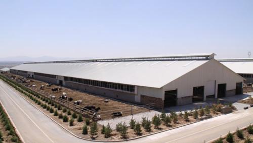 Atelier professionnel de structure métallique de protection de l'environnement à grande portée personnalisé