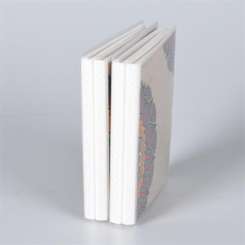 カスタムカラーカバー24クリアシート48インナーページ48ポケットPPプラスチックフォトアルバム在庫あり